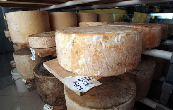 Mike Reeve Head Cheesemaker for Pure Artisan Cheese